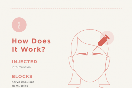 The Basics of Botox Infographic