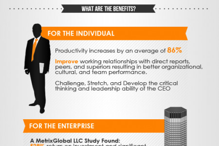 The Benefits of a CEO Coach Infographic