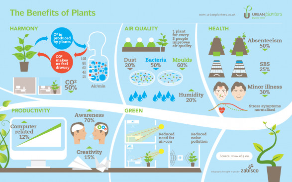 The Benefits of Plants [Infographic] ���« Zabisco Blog