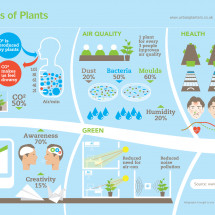 The Benefits of Plants Infographic