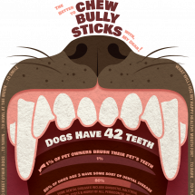 The Better To Chew Bully Sticks With, My Dear! Facts Dog Dental Disease & Dog Chews Infographic