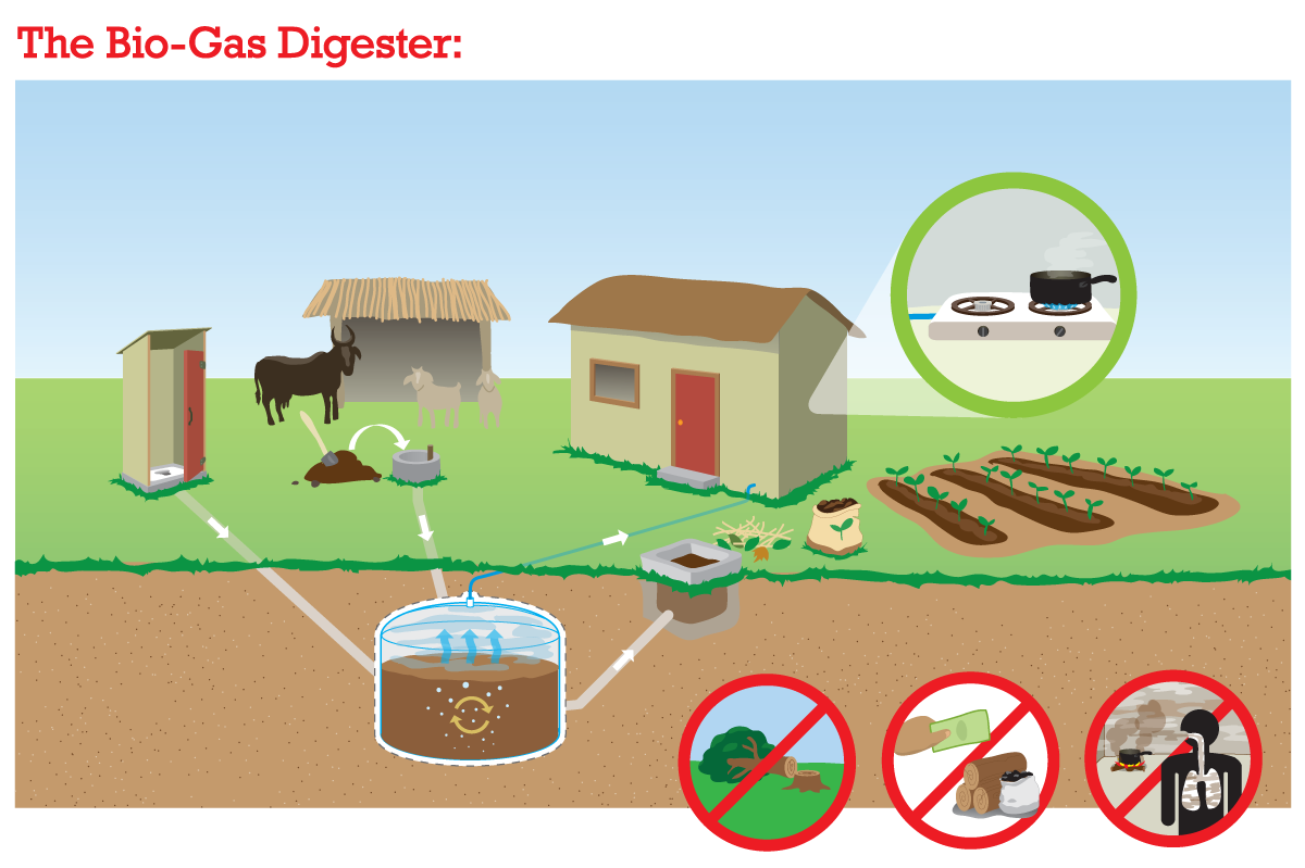 Biogas Some Plant Diagram Photos Anaerobic Digester Biodigester Systems