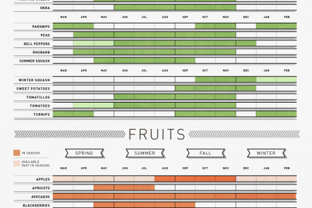 The Bountiful Year: A Guide to Seasonal Fruits and Vegetables Infographic