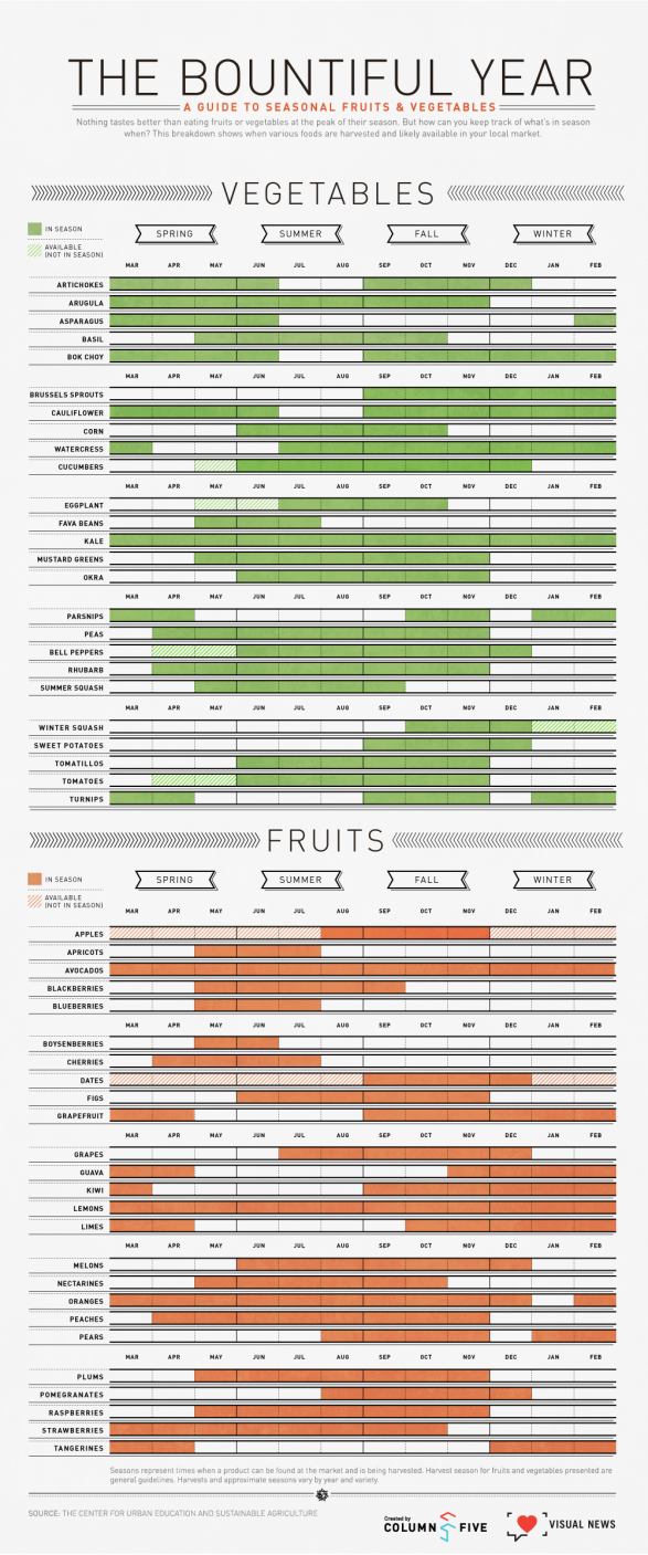 The Bountiful Year: A Guide to Seasonal Fruits and Vegetables