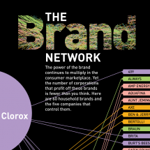 The Brand Network Infographic