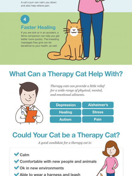The Cats effect on human health Infographic