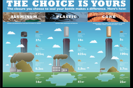 The Choice is Yours Infographic