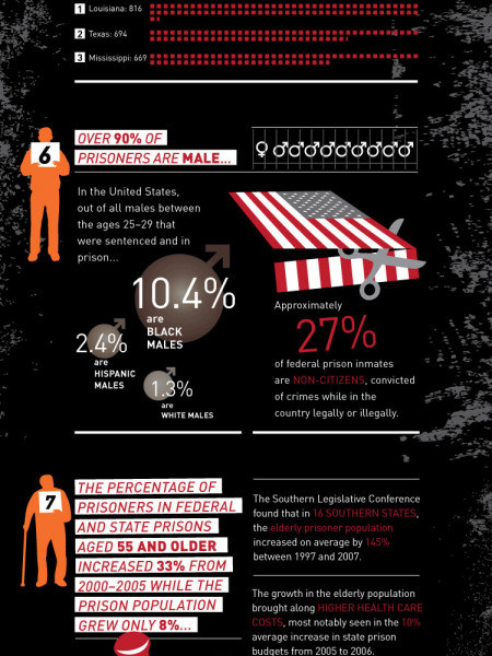 The Cold Hard Facts about Incarceration  Infographic