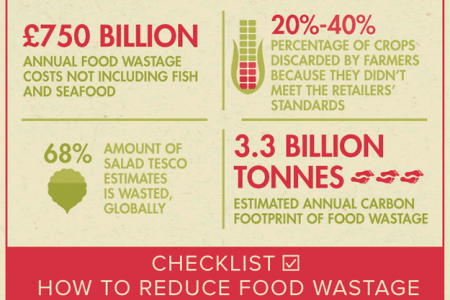 The Cost of Food Wastage Infographic Infographic