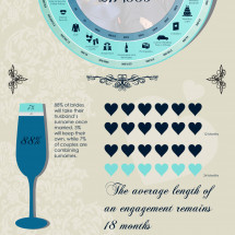 The Cost Of William & Kates Wedding Infographic