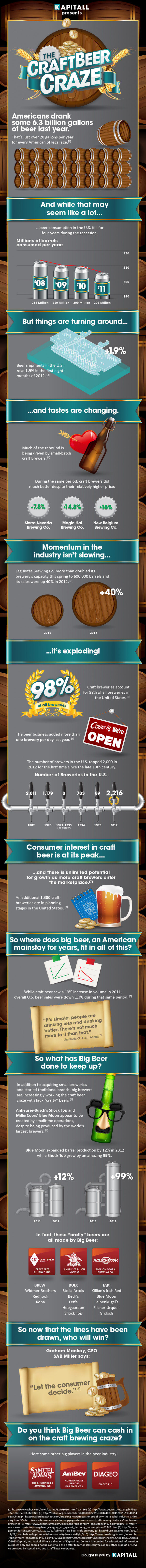 The Craft Beer Craze Infographic