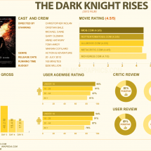 The Dark Knight Rises Infographic