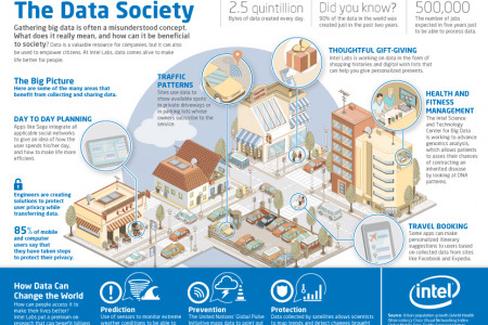 The Data Society Infographic