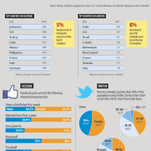 The Demographics of Social Media Infographic