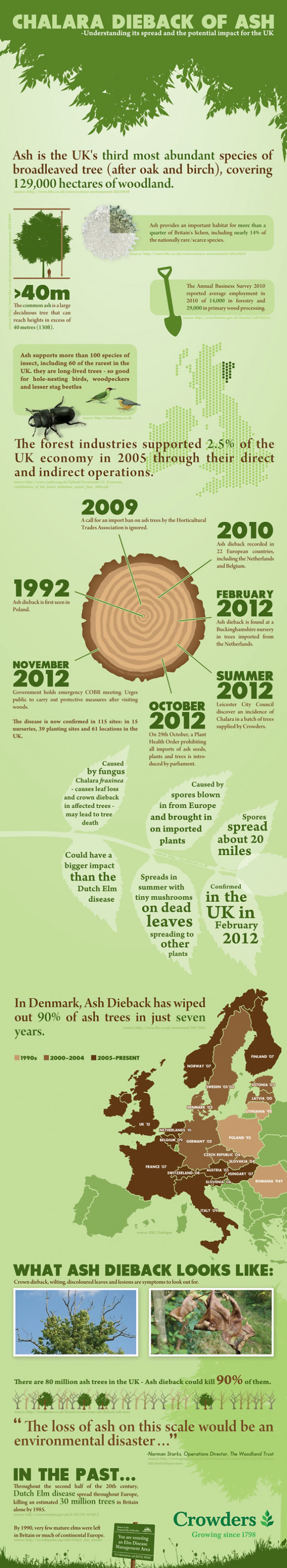 The devastation caused by Ash Dieback disease Infographic