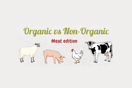The Difference Between Organic & Non-Organic Meat Infographic