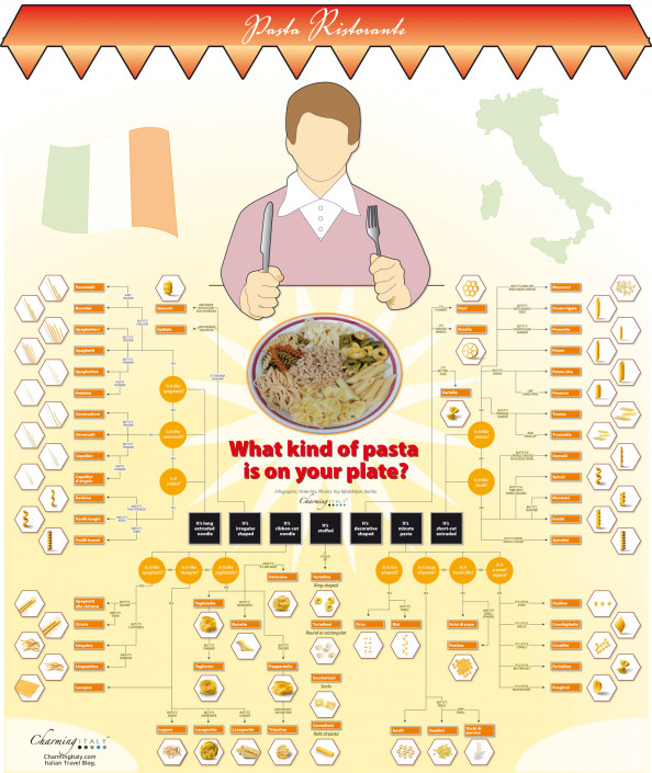 The Different Types of Pasta Infographic