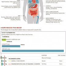 The Effects of Radiation on the Body Infographic