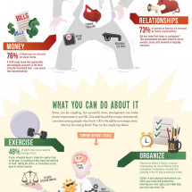 The Effects of Stress Infographic