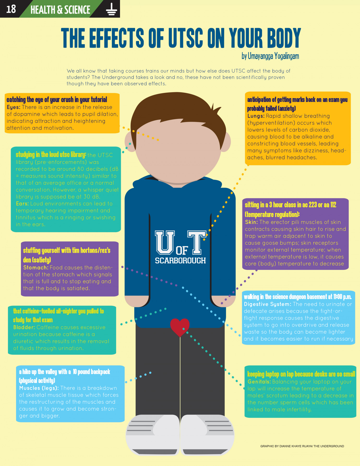 The Effects of UTSC in Your Body Infographic