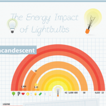The Energy Impact of Lightbulbs Infographic