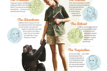 The Evolution of Jane Goodall Infographic