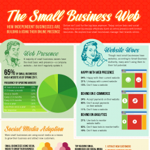 The Expanding Small Business Web Infographic