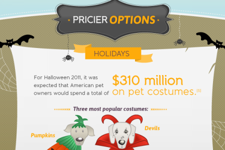 The Expense of a Pet: From Costumes to Kibble Infographic