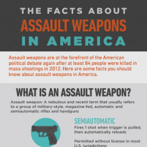The Facts About Assault Weapons in America Infographic
