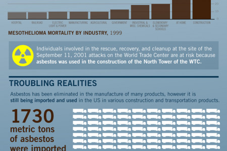 The Facts About Mesothelioma Infographic