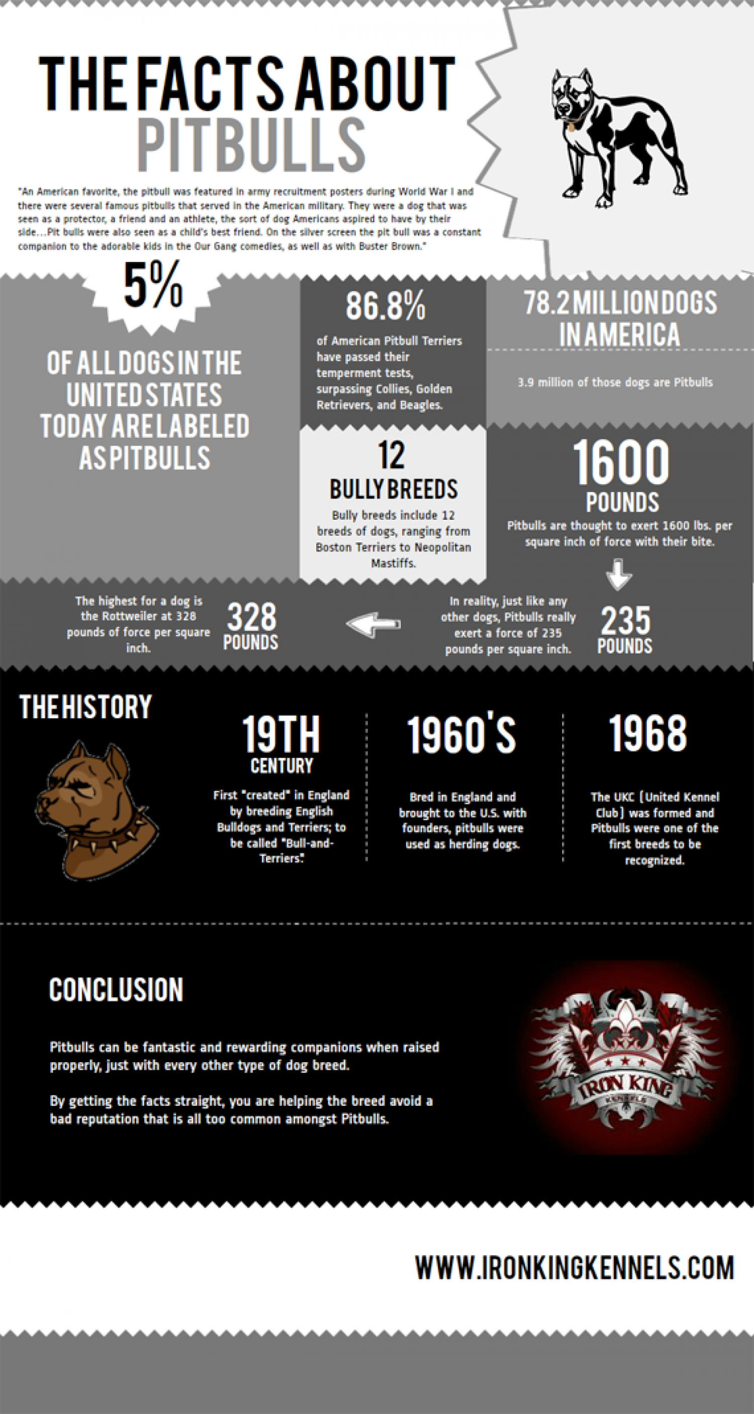The Facts About Pitbulls Infographic