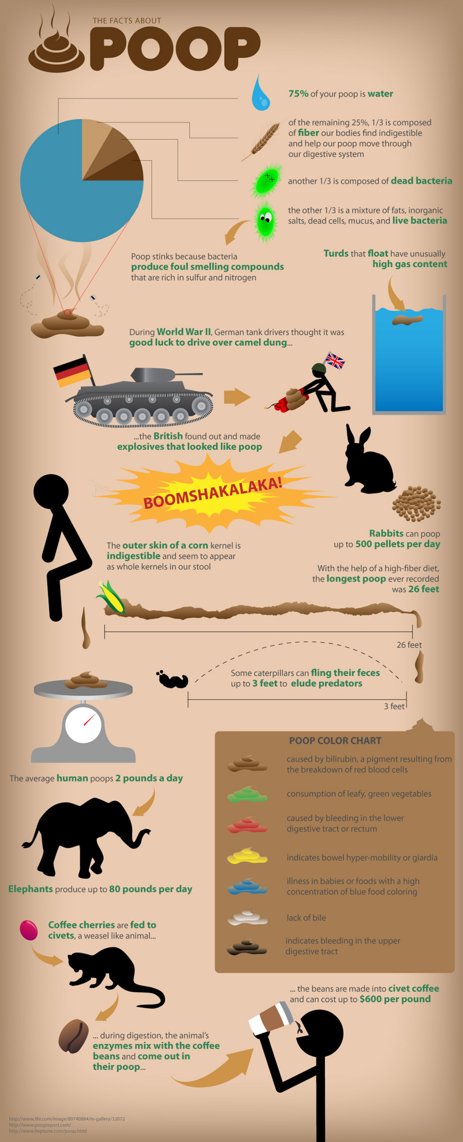 The Facts About Poop Infographic