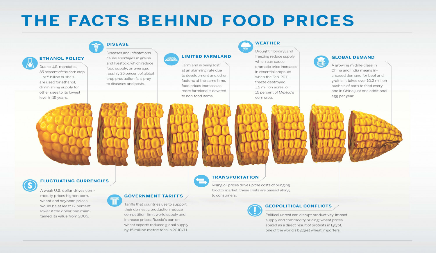 The Facts Behind Food Prices Infographic
