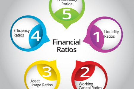 The Financial Ratios Infographic