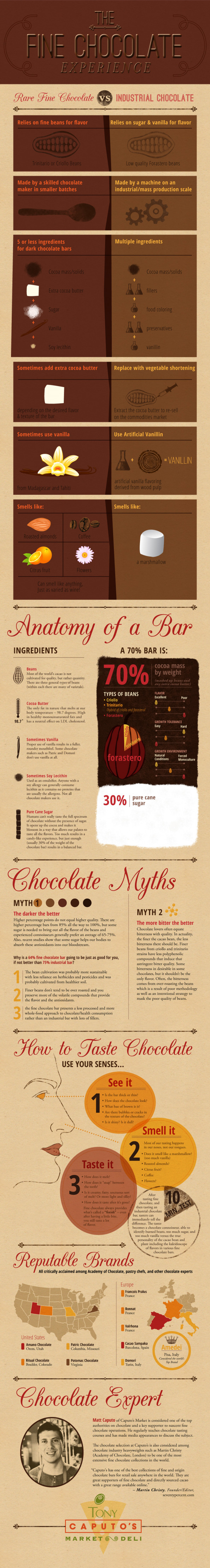 The Fine Chocolate Experience Infographic Infographic