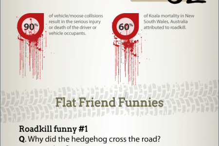 The Flat Out Truth About Roadkill Infographic