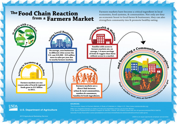 The Food Chain Reaction from a Farmers Market