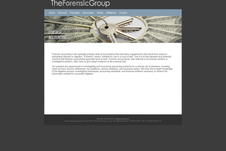 The Fraud Group Services (Forensic Accounting) Infographic