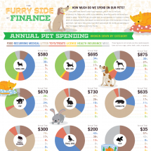 The Furry Side Of Finance Infographic