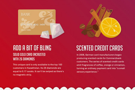 The Future of the Credit Card Infographic