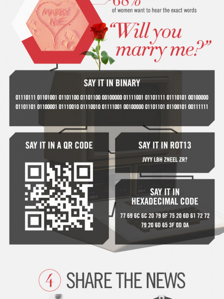 The Geek's Guide to Proposing Infographic