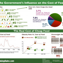 The Government's Influence on the Cost of Food  Infographic