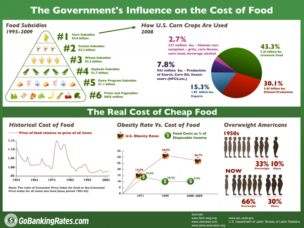 The Government&#039;s Influence on the Cost of Food  Infographic