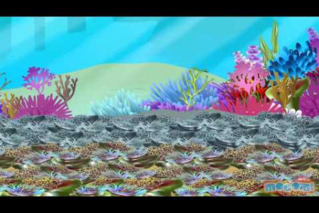 The Great Barrier Reef Infographic