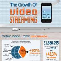 The Growth of Video Streaming Infographic