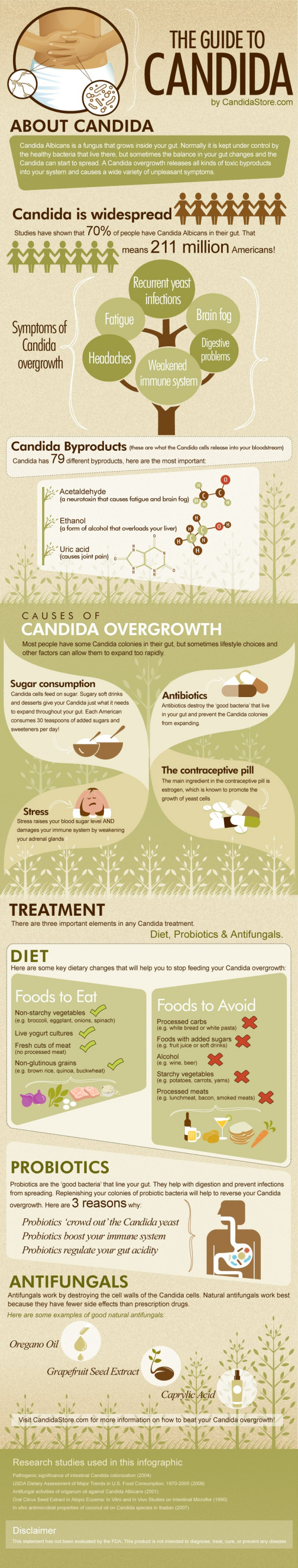 The Guide To Candida Infographic