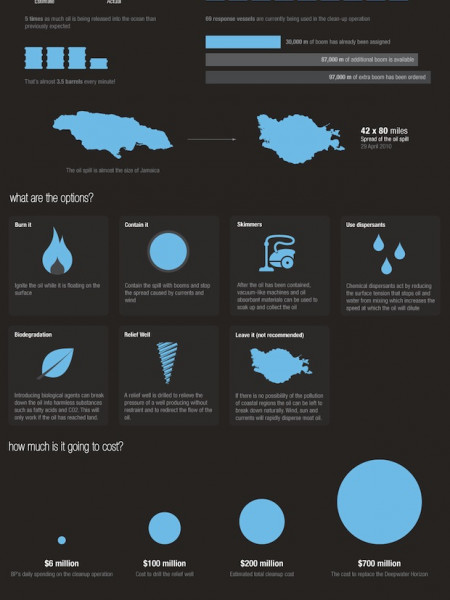 The Gulf of Mexico Oil Spill Infographic