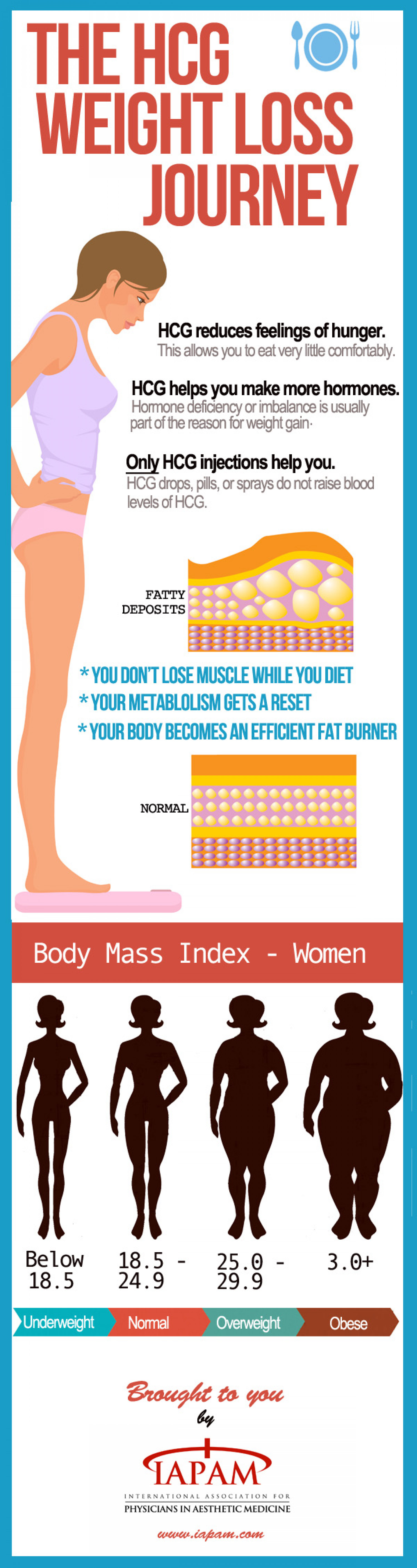 The HCG Weight Loss Journey Infographic
