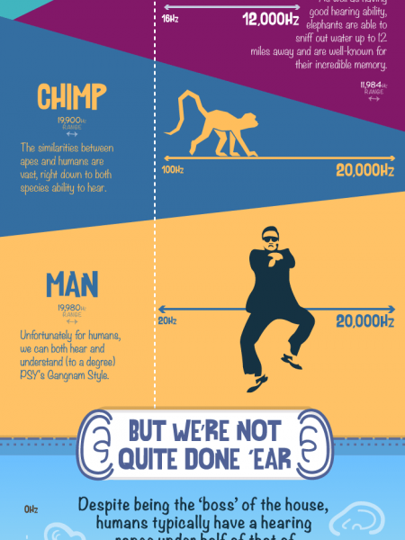 The Hearing Ranges of Animals - Which Animals Hear Best? Infographic