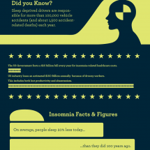 The High Cost of Insomnia Infographic